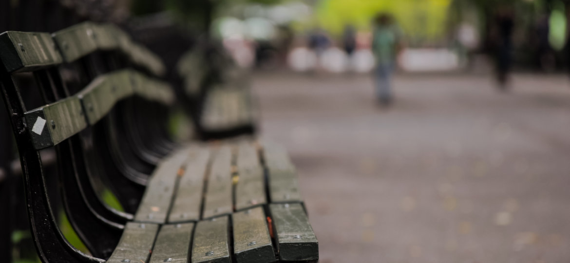 Canva - Selective Focus Photography of Brown Wooden Bench